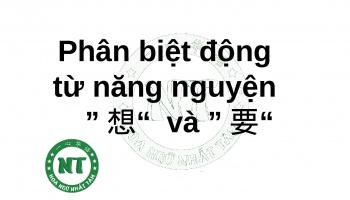 """Phân biệt động từ năng nguyện """"想"""" và """"要"""""""